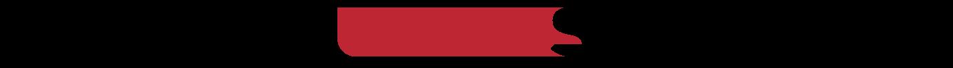 Logo ALEKS & SHANTU