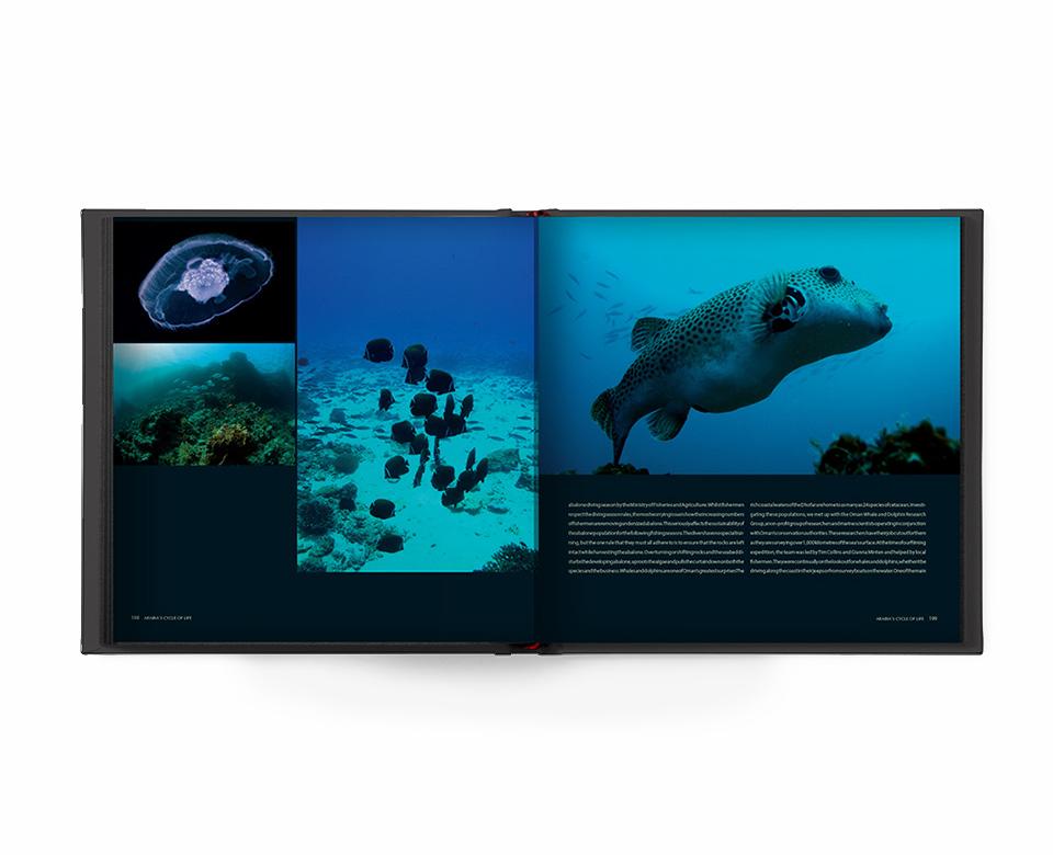 Offen Buch Cycle of Life - Unterwasserfotos mit Fischen und Korallen