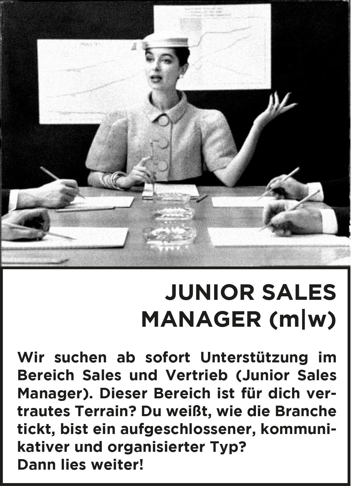 Jobbeschreibung/Anzeige Junior Sales Manager*in